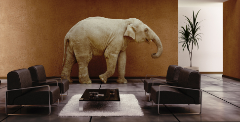 The Elephant in the #LawBlogs Room